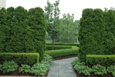 Grandiose-hedges