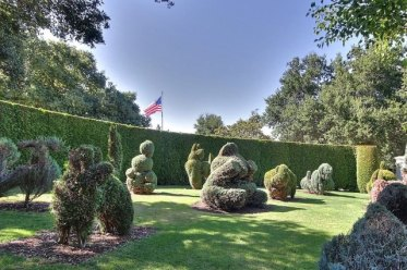 Hedges-and-topiaries