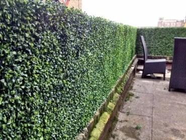 Garden-privacy-protection-hedge-garden-boxwood-rattan-furniture