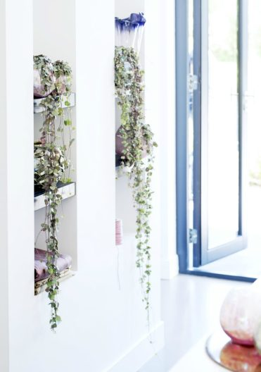 Hanging-plants-on-shelves-900x1286-1