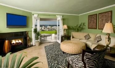 Stylish-safari-interior-design