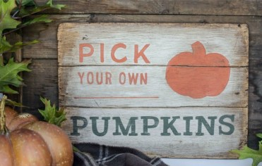 Pick-your-own-pumpkins-diy-fall-sign