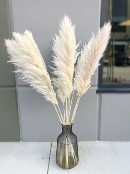 Pampas-grass-decoration-ideas-and-tips12