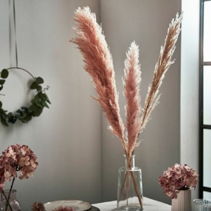 Pampas-grass-decoration-ideas-and-tips32