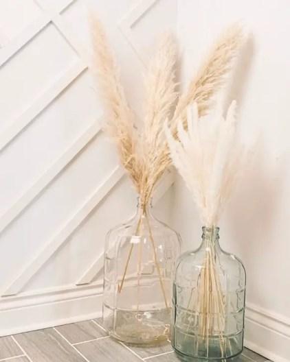 Pampas-grass-home-and-garden-ideas22