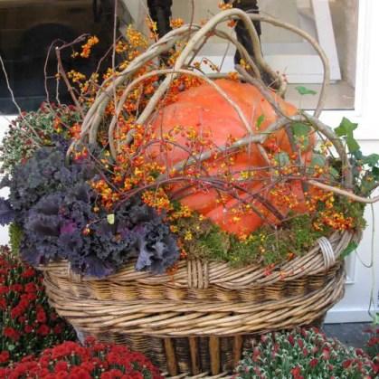 Pumpkin-grapevine-basket
