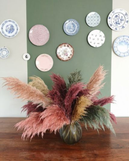 Colored-pampas-grass