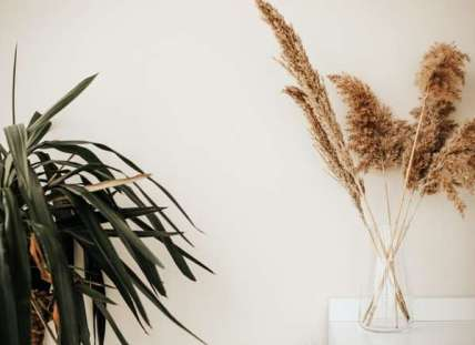 Pampas_grass_decor_ideas
