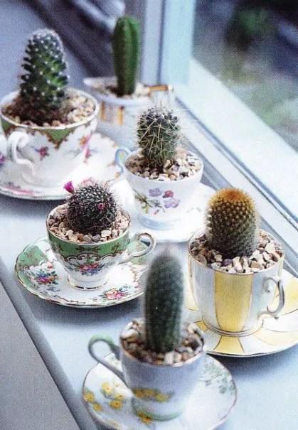 1-kleine-Kaktus-Dekoration-Ideen8