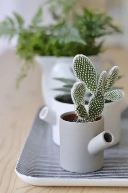 Kleine-Kaktus-Dekoration-Ideen14