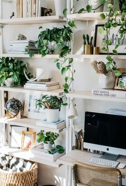 Enliven-your-workspace-with-potted-greenery-and-climbing-plants-easily-they-will-make-the-space-welcoming