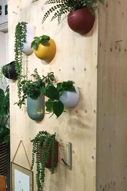 Wand-Pflanzgefäße-bunte-Keramik-montiert