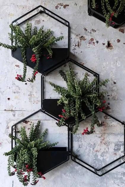 Wand-Pflanzgefäße-metallic-montiert-hexagon