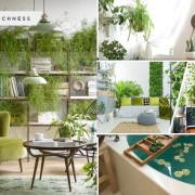 45 ideas to provide houseplant to your house