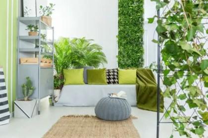 Raumdekorationsideen-mit-Pflanzen14