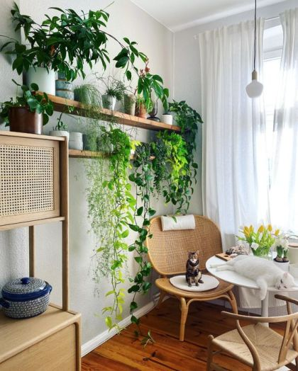 Eine-gemütliche-leseecke-mit-rattan-möbeln-offene-regale-mit-topfpflanzen-und-kletterern-ist-sehr-schick-und-frisch