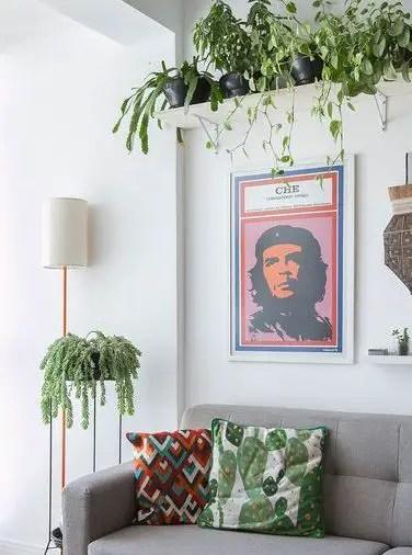 Ein-modernes-Wohnzimmer-mit-Kletterpflanzen-von-oben-hängend-und-ein-kleines-neben-dem-Sofa