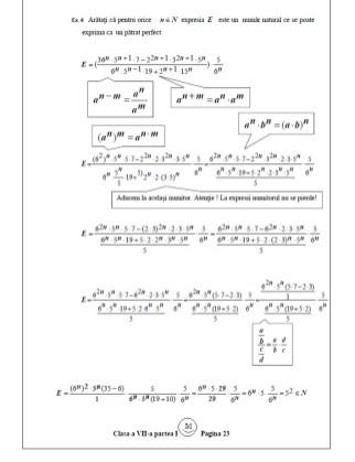 Pagina -8