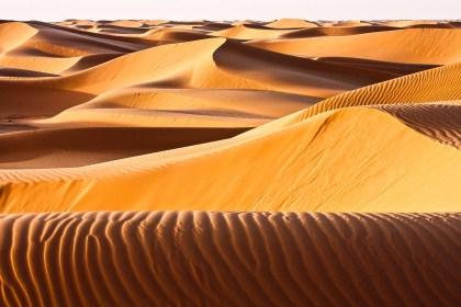 Dunas en el desierto de Argelia. © mateoht 1990-2013 - http://lafotodeldia.net