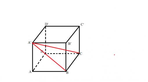 probleme rezolvate cub