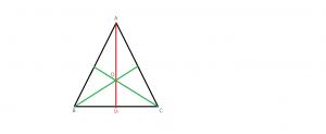 Problema rezolvata cu vectori