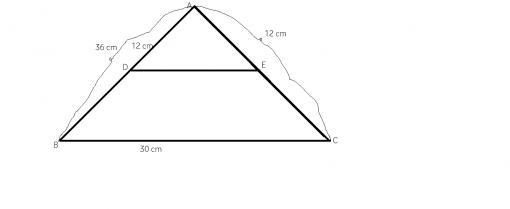 cum aplicam teorema fundamentala a asemanarii
