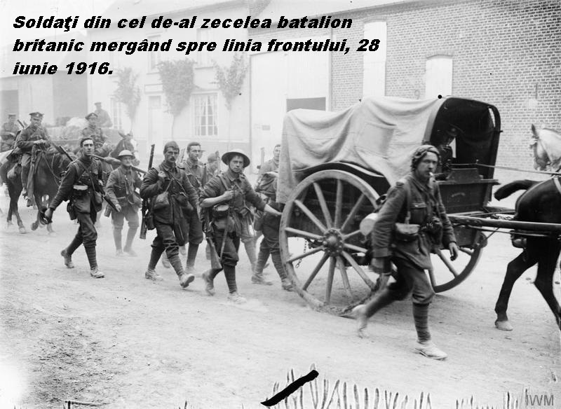 The_Battle_of_the_Somme,_July-november_1916_Q724