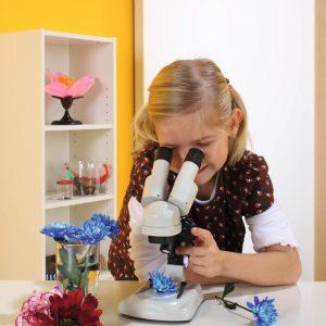 Microscop optic Stereo pentru elevi 12
