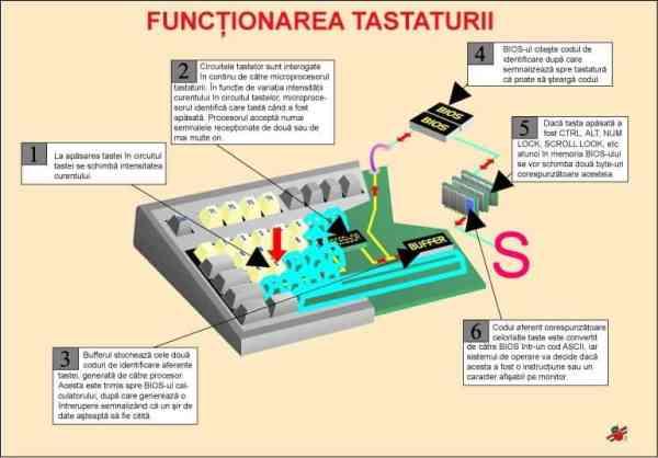 Functionarea tastaturii 3