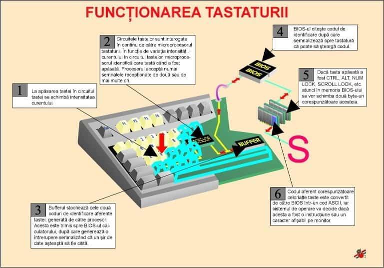 Functionarea tastaturii