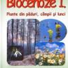 BIOCENOZE 1. Micul ghid al plantelor 2