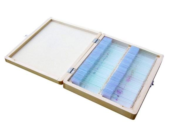Set 100 preparate pentru microscop BIOLOGIE GENERALA 4