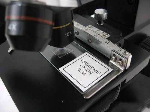 Microscop digital cu ecran LCD 8