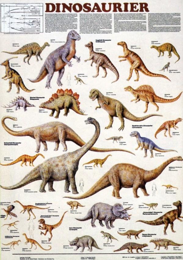 Dinozauri 3