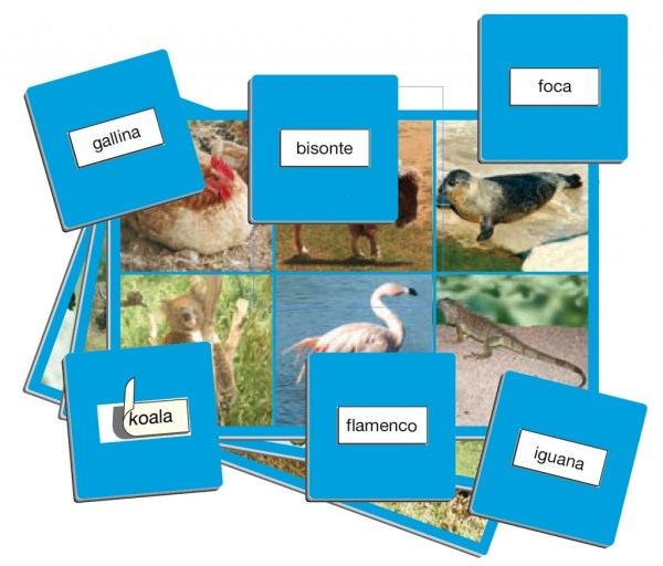 Joc loto cu 72 de animale 9