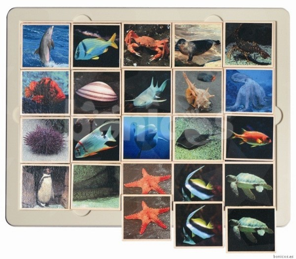 Fauna marina - joc loto 3