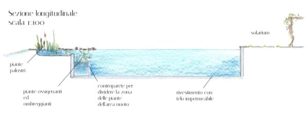 """alt=""""architettura-outdoor-piscine-naturali-ecosostenibili-schema-disegno"""""""