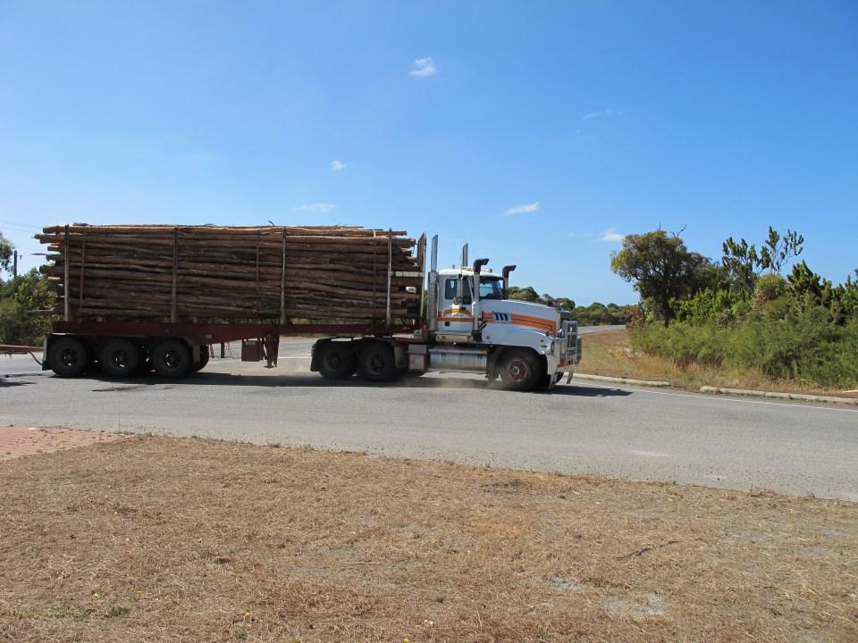 Abtransport des geernteten Holzes.