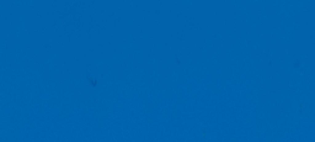 403 / Light Blue