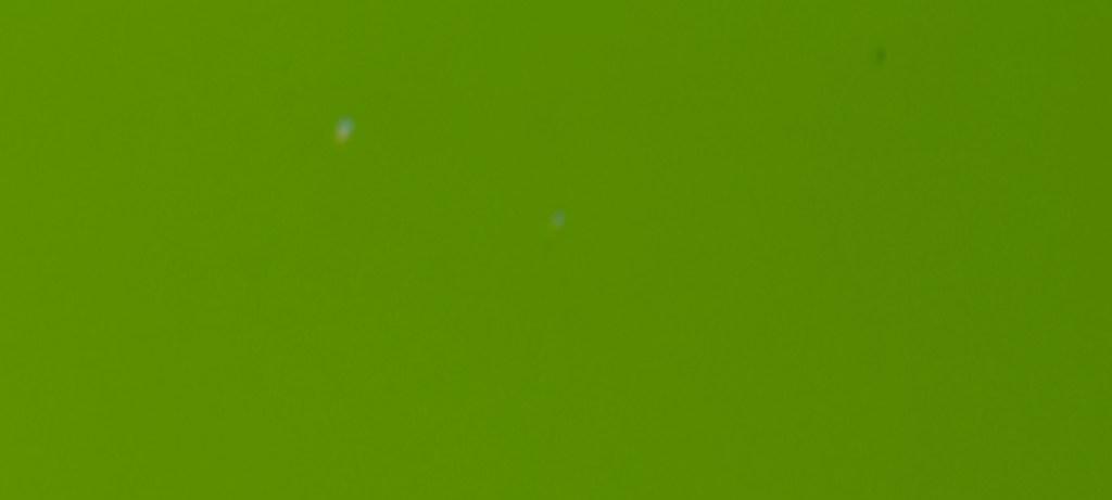 467 / Apple Green