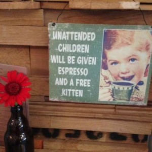 Unwanted child - Espresso & kitten