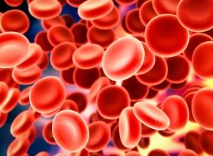 anemia-embarazo