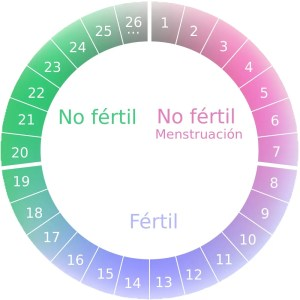 embarazo con regla