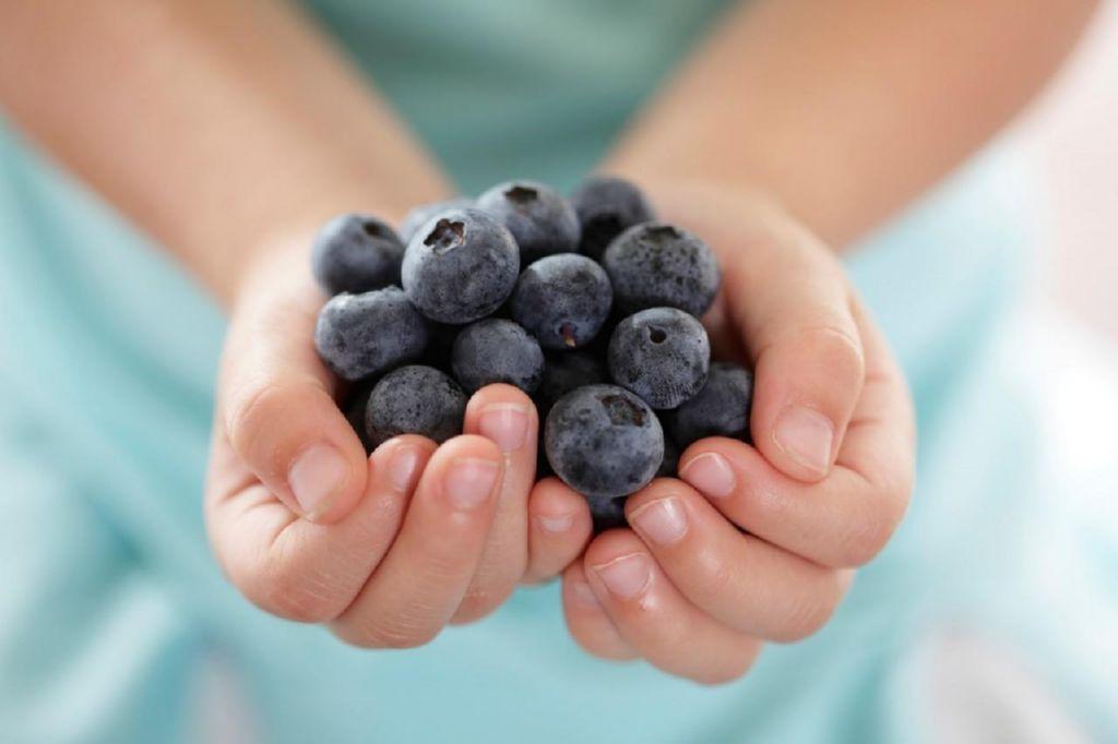 10 alimentos nutritivos y saludables para ni os maternidadfacil - Alimentos ricos en fibra para ninos ...
