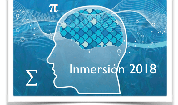 Immersion Program for the Summer of 2018