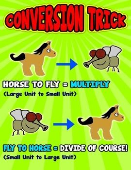 Horse to Fly