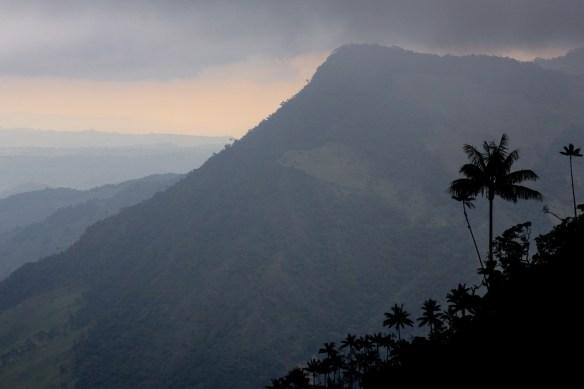 Auf Wandertour im Valle de Cocora