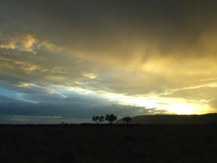 glorious sunset on the plains of the Masai Mara in Kenya