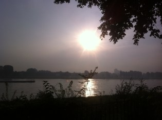 Morgens beim Nordic Walking am Rhein - September 2014-2