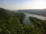 Rheinsteig-Wanderung im September 2014-5